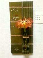 20091020115225.jpg